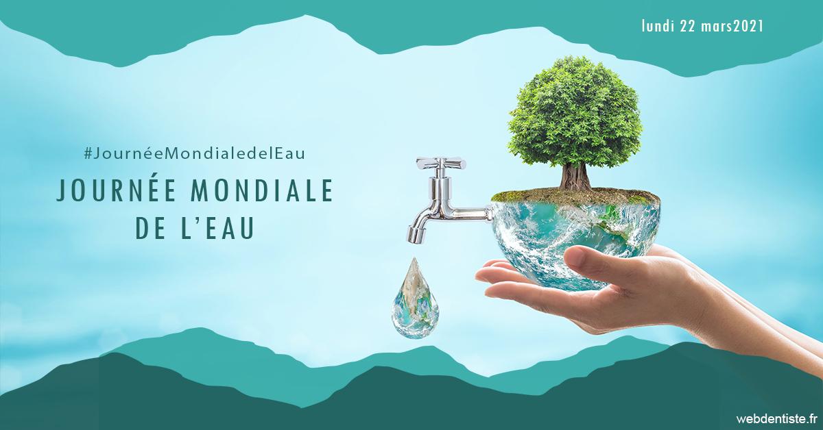 https://www.centredentairetoulon.fr/Journée de l'eau 1
